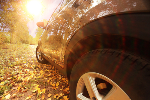 Cleaning car leaf stains from your paint